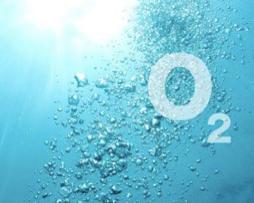 SOGEVAC-Oksijen-vakum-paketleme